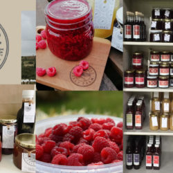 The Field Berry Farm | Gauteng's Very Own Raspberry Farm