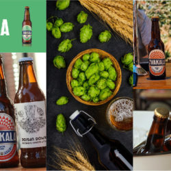 Zwakala Brewery | For the Love of Beer | Craft Beer Bottles